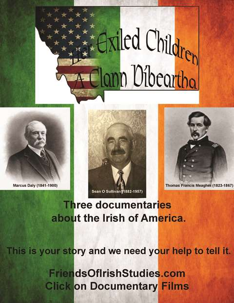 Support Irish Studies in America